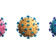 COVID-19 Variants What You Need to Know